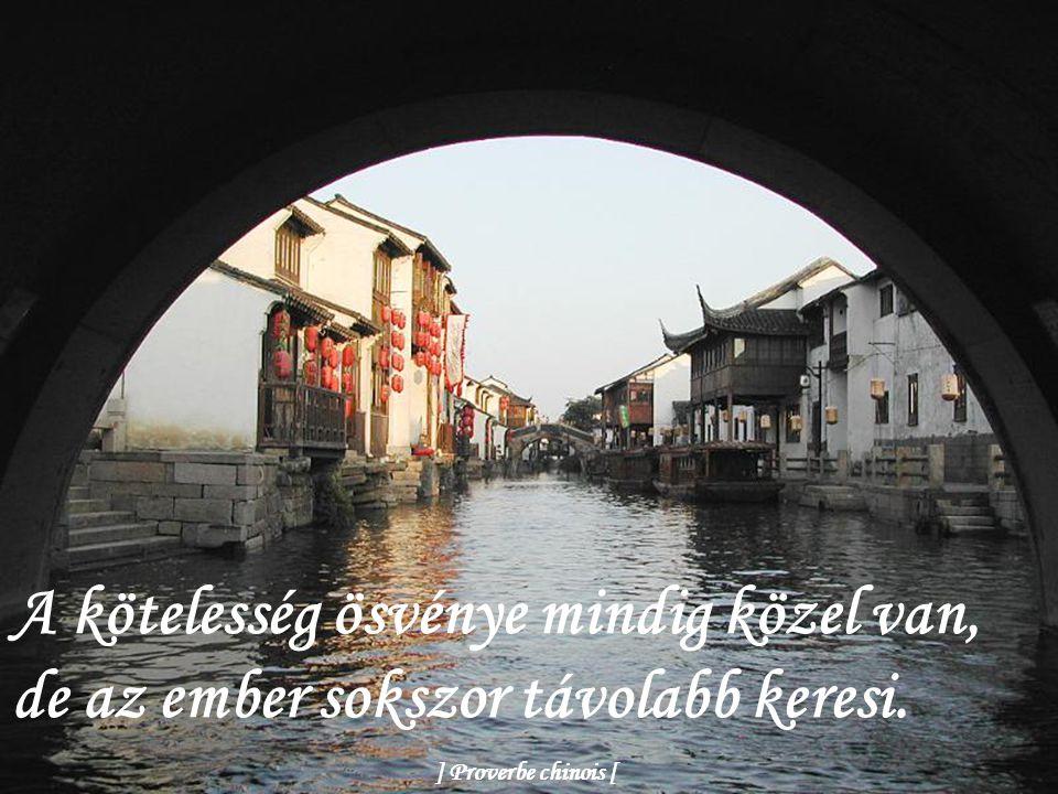 A kötelesség ösvénye mindig közel van, de az ember sokszor távolabb keresi. ] Proverbe chinois [