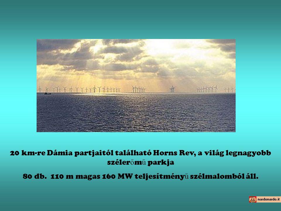 20 km-re Dámia partjaitól található Horns Rev, a világ legnagyobb széler ő m ű parkja 80 db. 110 m magas 160 MW teljesítmény ű szélmalomból áll.