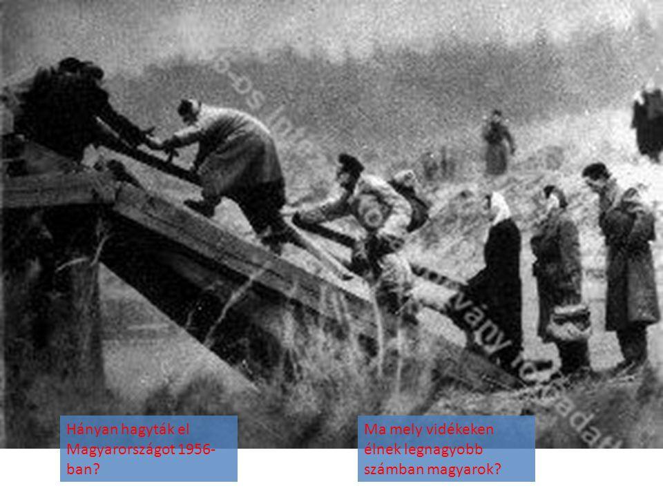 Hányan hagyták el Magyarországot 1956- ban? Ma mely vidékeken élnek legnagyobb számban magyarok?