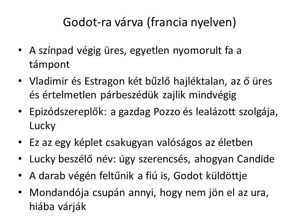 Godot-ra várva (francia nyelven) A színpad végig üres, egyetlen nyomorult fa a támpont Vladimir és Estragon két bűzlő hajléktalan, az ő üres és értelm
