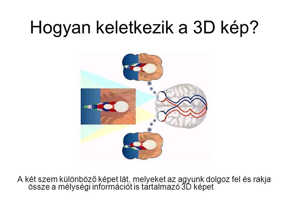 Hogyan keletkezik a 3D kép? A két szem különböző képet lát, melyeket az agyunk dolgoz fel és rakja össze a mélységi információt is tartalmazó 3D képet