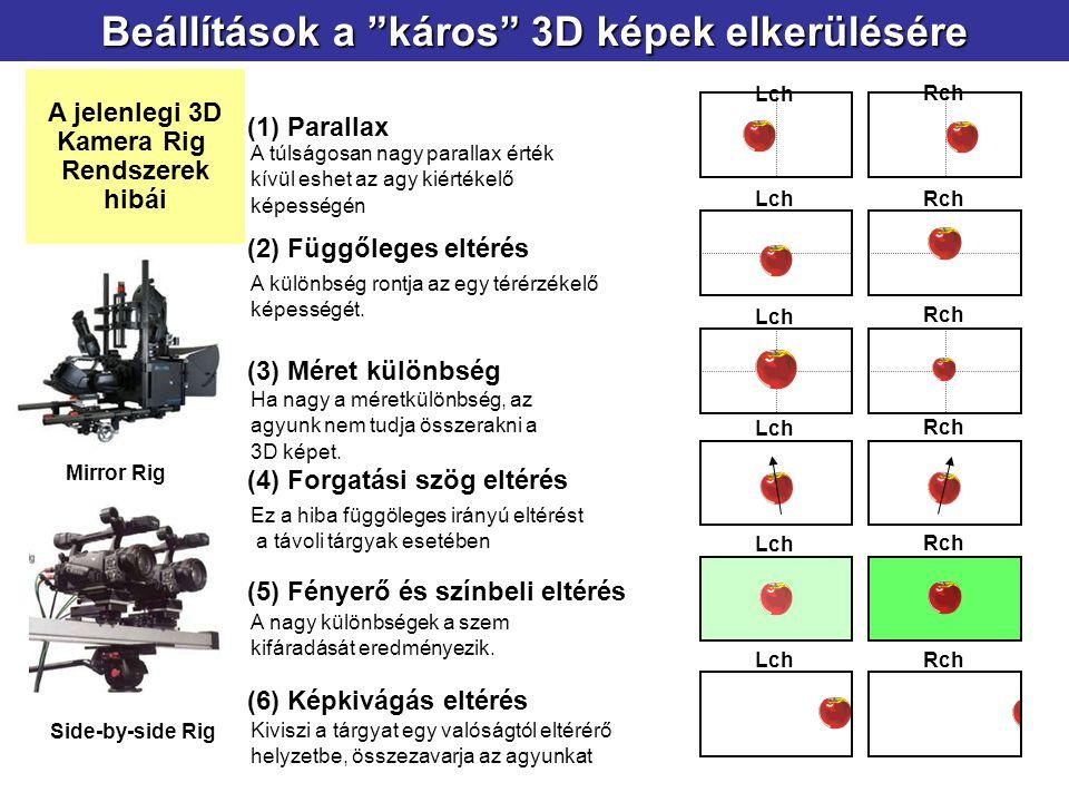 (1) Parallax Lch Rch (2) Függőleges eltérés LchRch (3) Méret különbség Lch Rch (5) Fényerő és színbeli eltérés Lch Rch (6) Képkivágás eltérés LchRch L