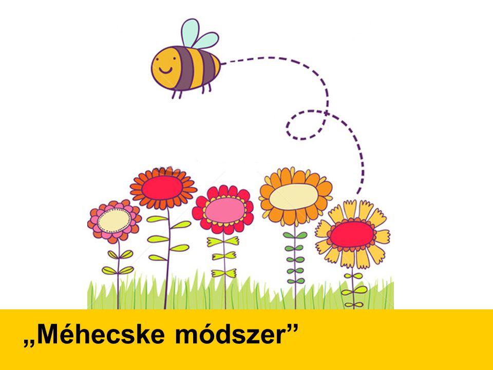 """""""Méhecske módszer"""