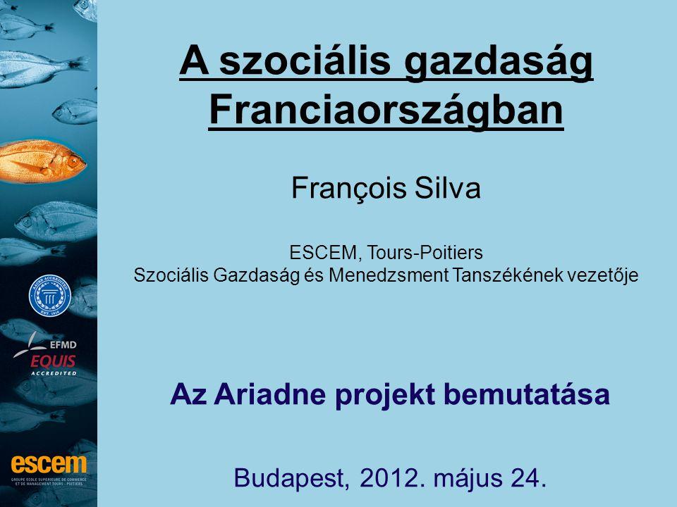 A szociális gazdaság Franciaországban François Silva ESCEM, Tours-Poitiers Szociális Gazdaság és Menedzsment Tanszékének vezetője Az Ariadne projekt bemutatása Budapest, 2012.