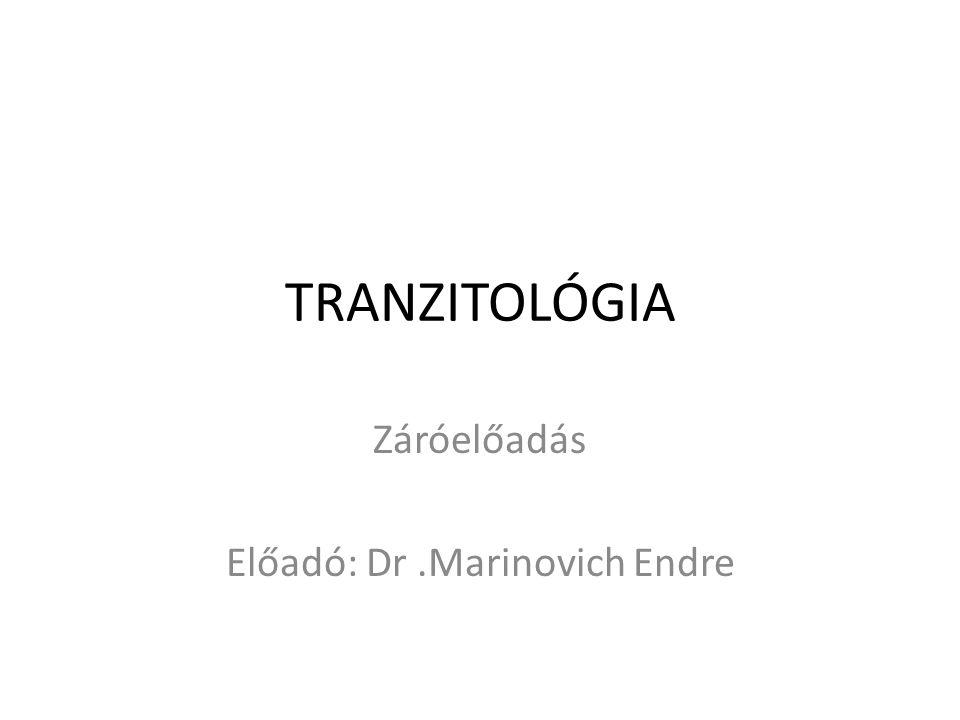 TRANZITOLÓGIA Záróelőadás Előadó: Dr.Marinovich Endre
