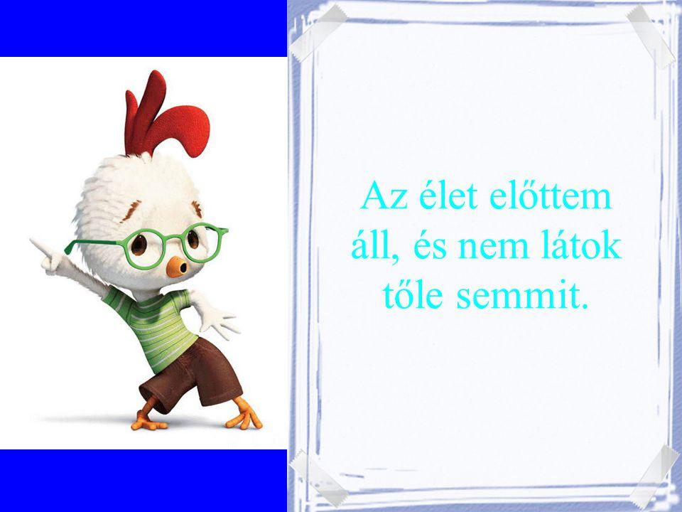A Magyar Mérnöki Kamara