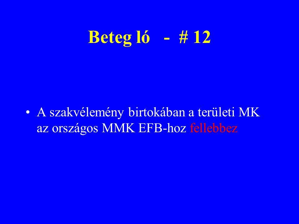 A szakvélemény birtokában a területi MK az országos MMK EFB-hoz fellebbez Beteg ló - # 12