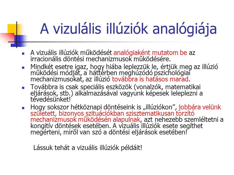 A vizulális illúziók analógiája A vizuális illúziók működését analógiaként mutatom be az irracionális döntési mechanizmusok működésére. Mindkét esetre