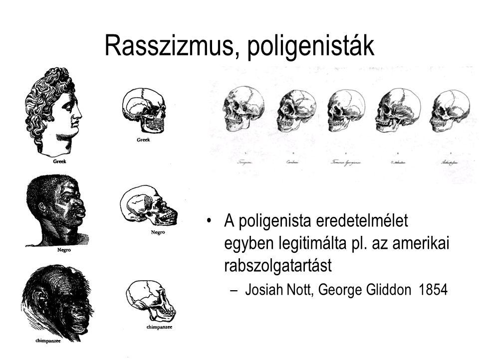 Rasszizmus, poligenisták A poligenista eredetelmélet egyben legitimálta pl. az amerikai rabszolgatartást –Josiah Nott, George Gliddon 1854