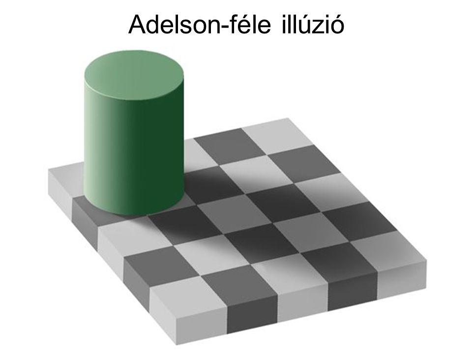 Adelson-féle illúzió