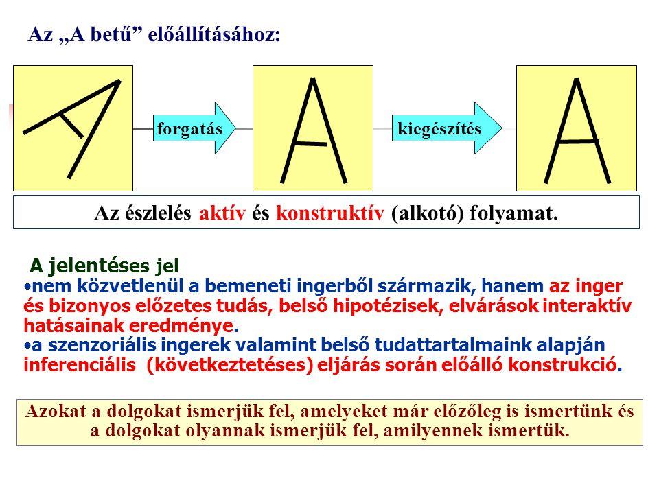 Caetano Kanizsa - virtuális háromszög Adott esetben az észelt mintázatot kiegészítjük a felismeréshez szükséges hiányzó jegyekkel