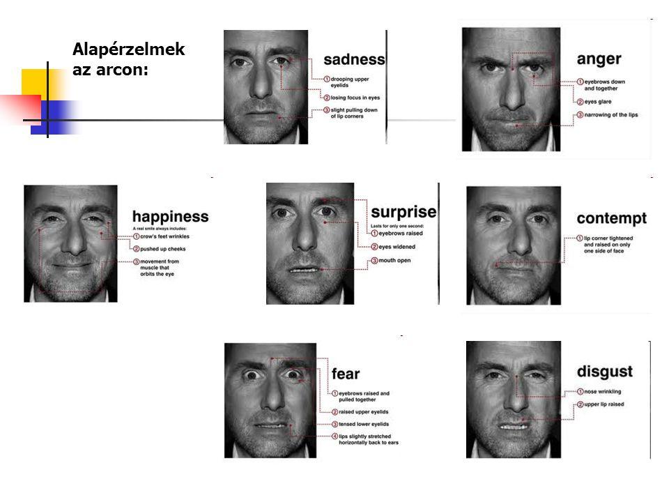 Alapérzelmek az arcon: