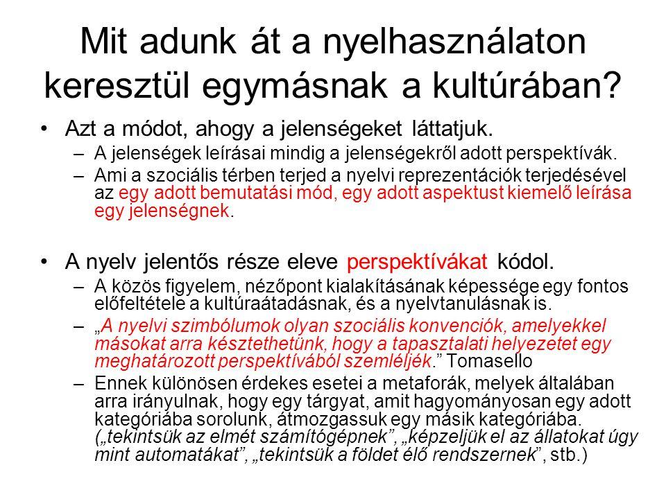 Meggyőzés RTM pl.