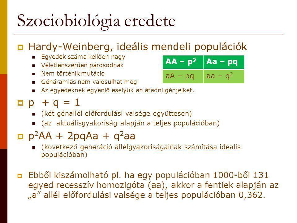 Szociobiológia eredete  Hardy-Weinberg, ideális mendeli populációk Egyedek száma kellően nagy Véletlenszerűen párosodnak Nem történik mutáció Génáram