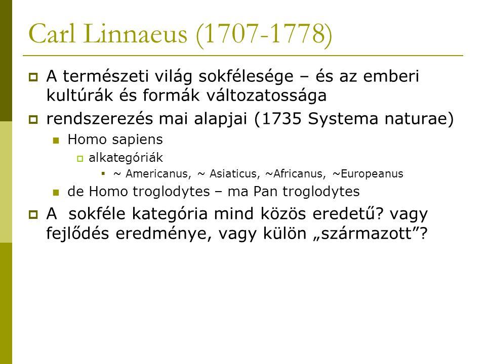 Carl Linnaeus (1707-1778)  A természeti világ sokfélesége – és az emberi kultúrák és formák változatossága  rendszerezés mai alapjai (1735 Systema naturae) Homo sapiens  alkategóriák  ~ Americanus, ~ Asiaticus, ~Africanus, ~Europeanus de Homo troglodytes – ma Pan troglodytes  A sokféle kategória mind közös eredetű.