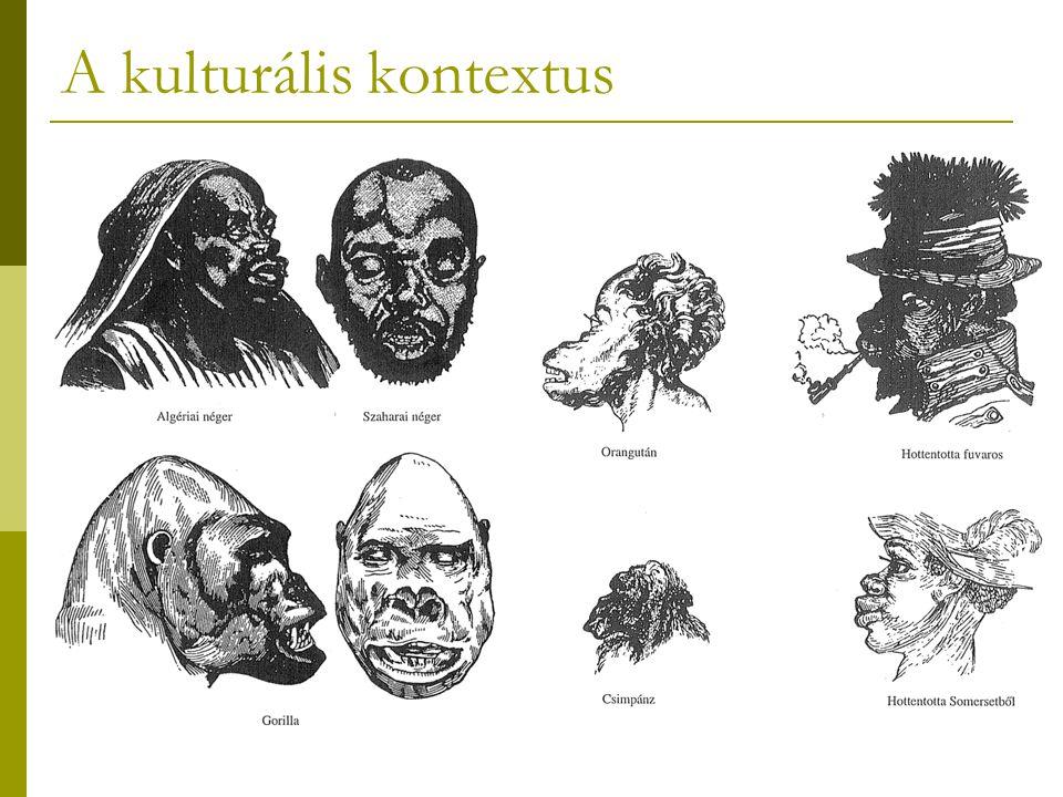 A kulturális kontextus