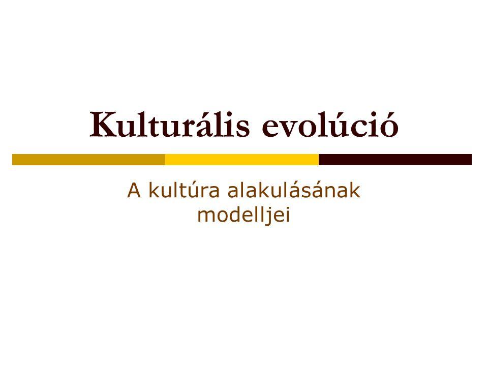 Kulturális evolúció A kultúra alakulásának modelljei