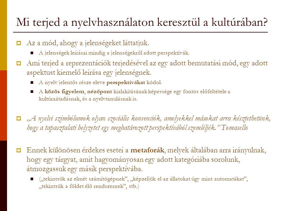 Mi terjed a nyelvhasználaton keresztül a kultúrában?  Az a mód, ahogy a jelenségeket láttatjuk. A jelenségek leírásai mindig a jelenségekről adott pe