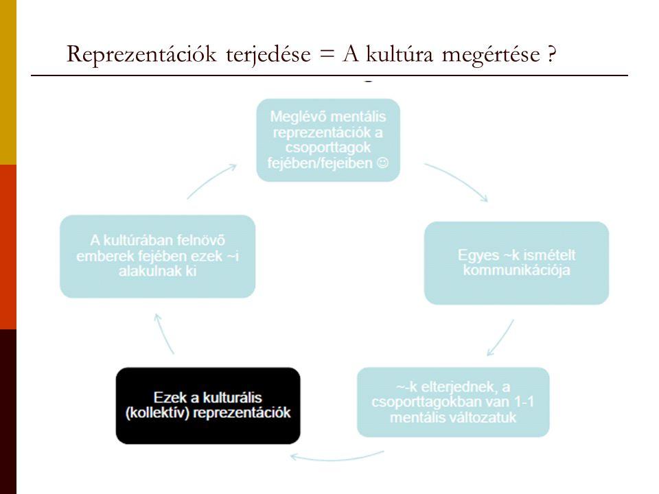 Reprezentációk terjedése = A kultúra megértése ?