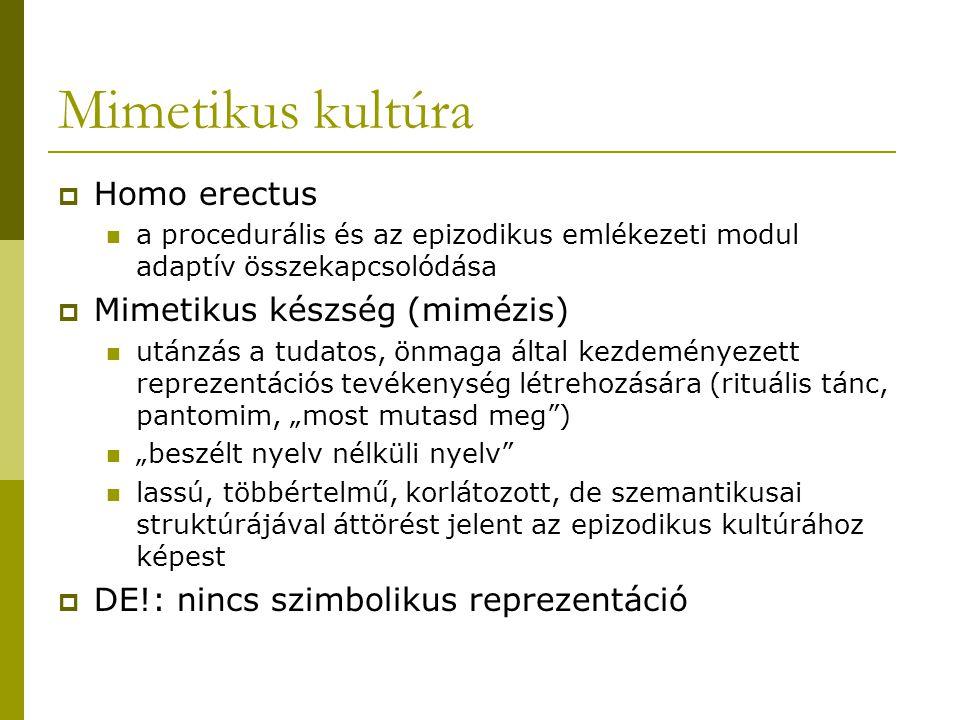 Mimetikus kultúra  Homo erectus a procedurális és az epizodikus emlékezeti modul adaptív összekapcsolódása  Mimetikus készség (mimézis) utánzás a tu