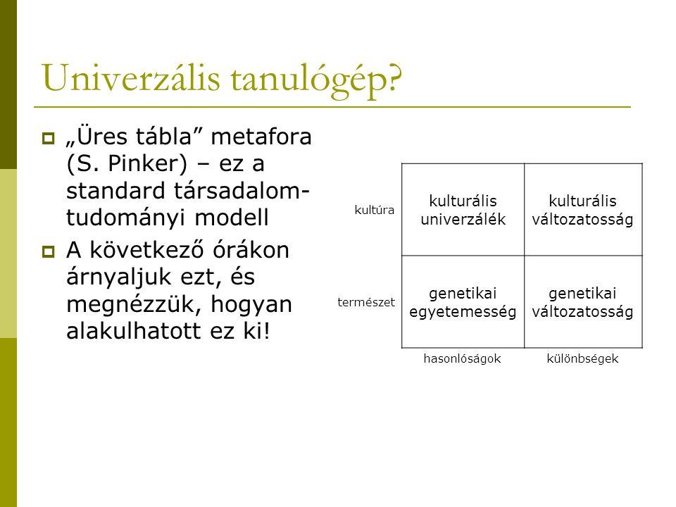 """Univerzális tanulógép. """"Üres tábla metafora (S."""