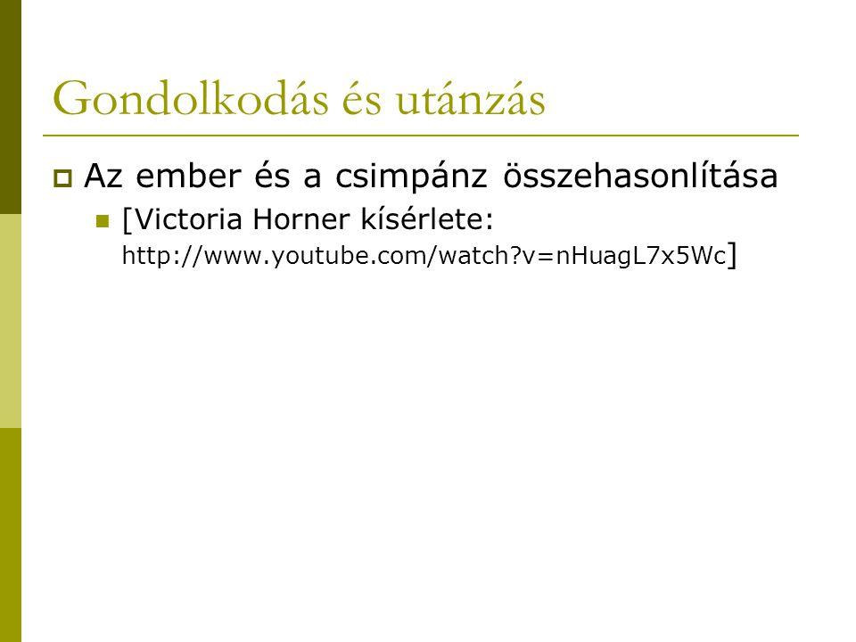 Gondolkodás és utánzás  Az ember és a csimpánz összehasonlítása [Victoria Horner kísérlete: http://www.youtube.com/watch?v=nHuagL7x5Wc ]