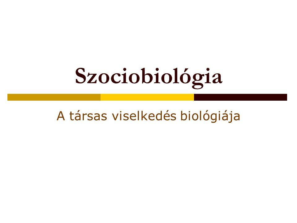 Szociobiológia A társas viselkedés biológiája