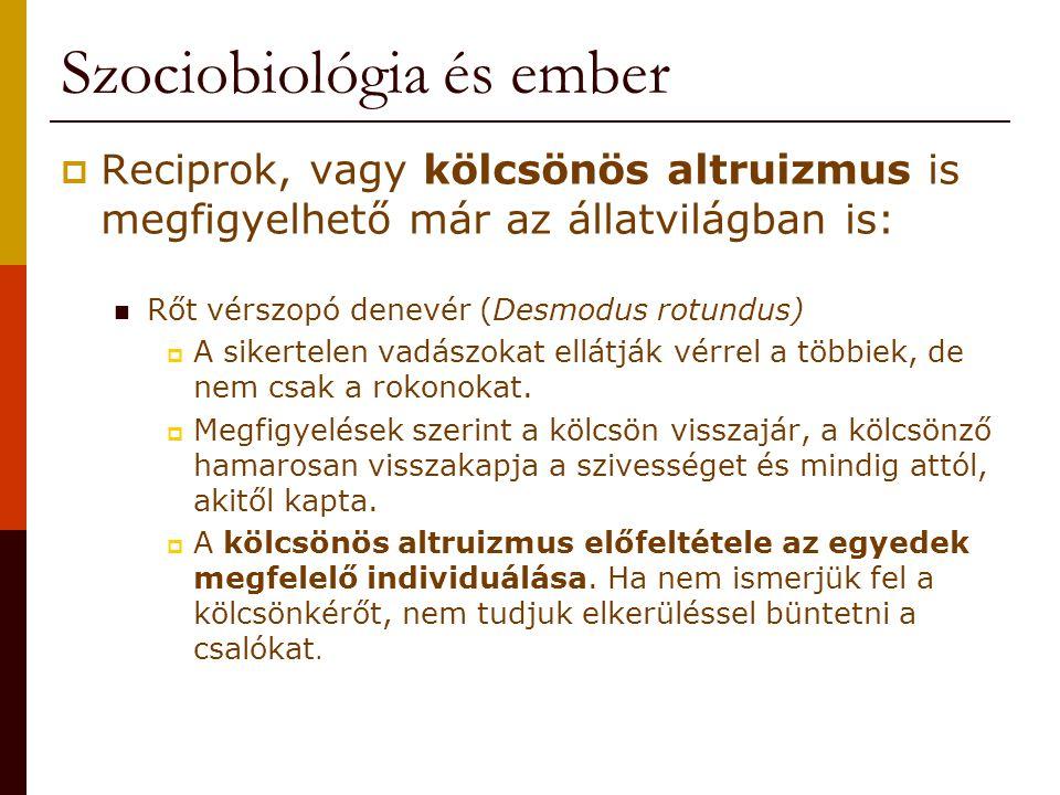 Szociobiológia és ember  Reciprok, vagy kölcsönös altruizmus is megfigyelhető már az állatvilágban is: Rőt vérszopó denevér (Desmodus rotundus)  A s