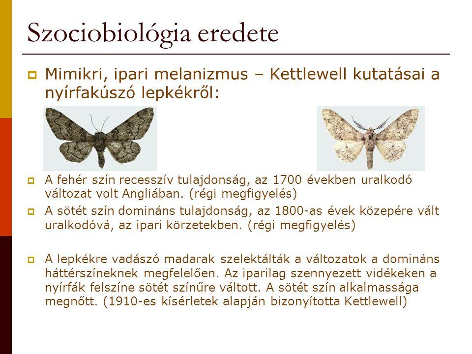 Szociobiológia eredete  Mimikri, ipari melanizmus – Kettlewell kutatásai a nyírfakúszó lepkékről:  A fehér szín recesszív tulajdonság, az 1700 évekb