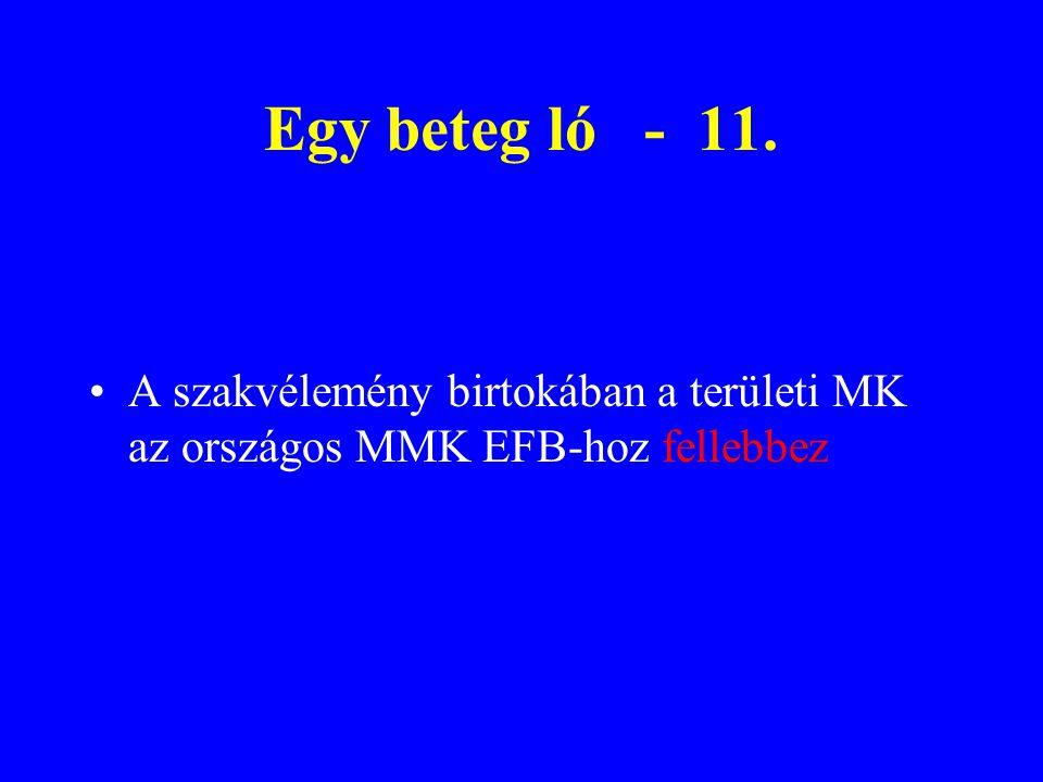 A szakvélemény birtokában a területi MK az országos MMK EFB-hoz fellebbez Egy beteg ló - 11.