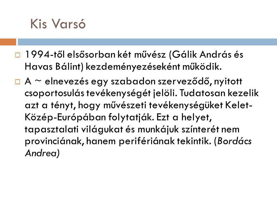 Kis Varsó  1994-től elsősorban két művész (Gálik András és Havas Bálint) kezdeményezéseként működik.  A ~ elnevezés egy szabadon szerveződő, nyitott
