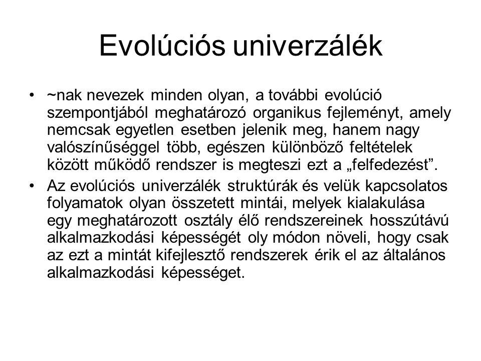Biológia – kultúra: párhuzam és különbség.