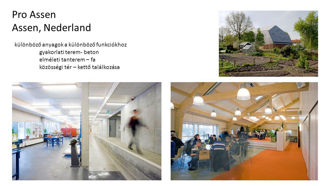 Traffic Bridge Sneek Pro Assen Assen, Nederland különböző anyagok a különböző funkciókhoz gyakorlati terem- beton elméleti tanterem – fa közösségi tér – kettő találkozása