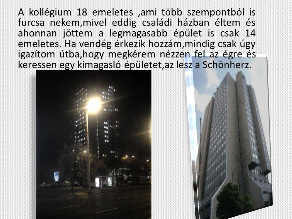 A kollégium 18 emeletes,ami több szempontból is furcsa nekem,mivel eddig családi házban éltem és ahonnan jöttem a legmagasabb épület is csak 14 emelet