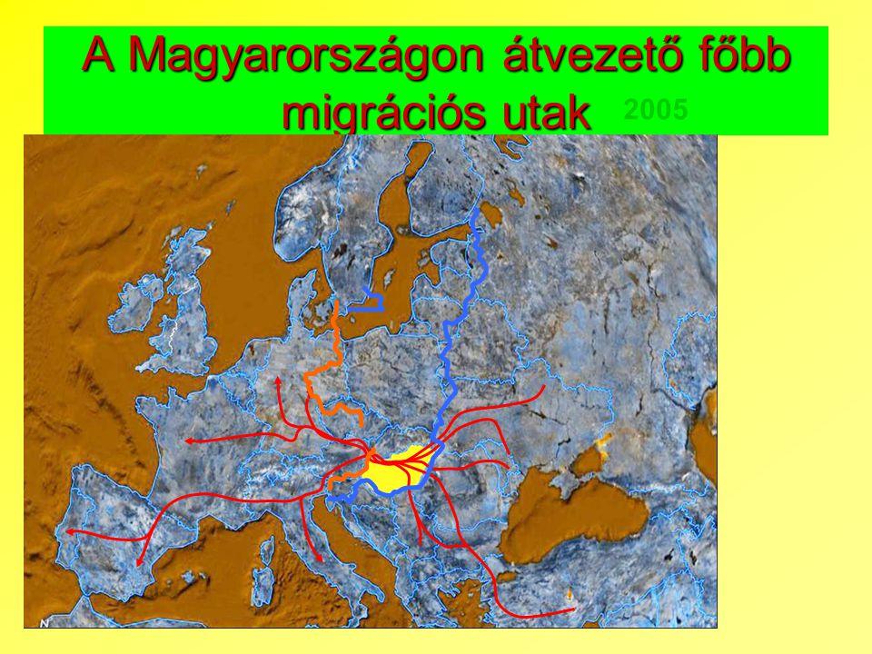 A Magyarországon átvezető főbb migrációs utak 2005