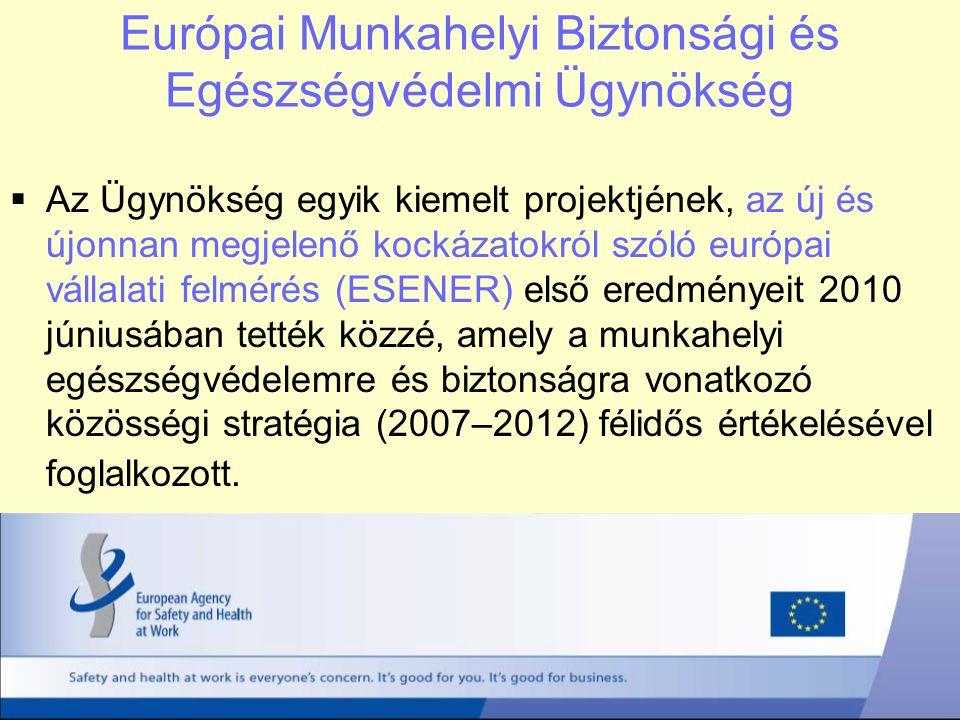 Európai Munkahelyi Biztonsági és Egészségvédelmi Ügynökség  Az Ügynökség egyik kiemelt projektjének, az új és újonnan megjelenő kockázatokról szóló e