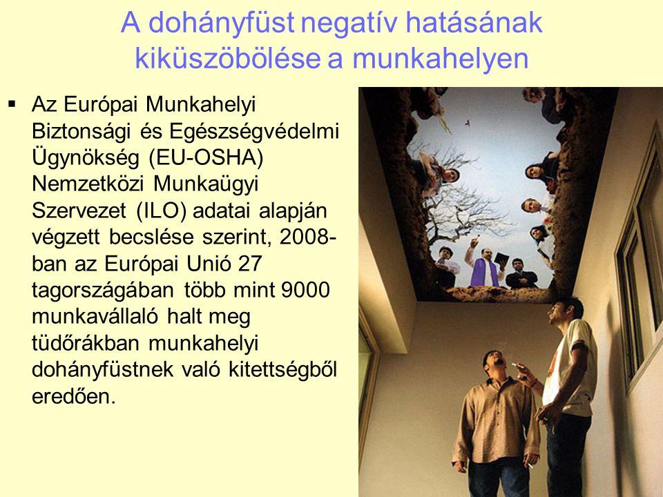 A dohányfüst negatív hatásának kiküszöbölése a munkahelyen  Az Európai Munkahelyi Biztonsági és Egészségvédelmi Ügynökség (EU-OSHA) Nemzetközi Munkaü