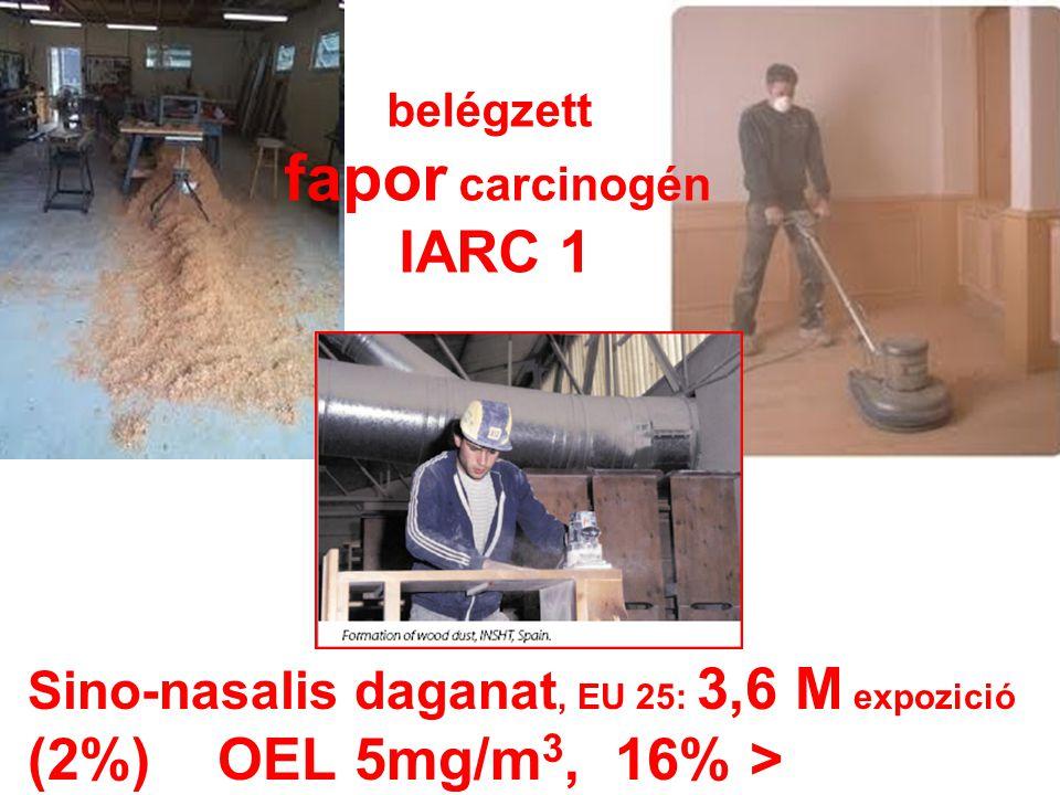 belégzett fapor carcinogén IARC 1 Sino-nasalis daganat, EU 25: 3,6 M expozició (2%) OEL 5mg/m 3, 16% >