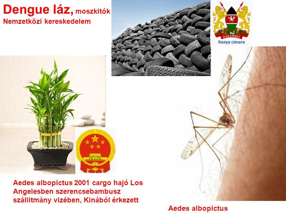 Dengue láz, moszkitók Nemzetközi kereskedelem Aedes albopictus Aedes albopictus 2001 cargo hajó Los Angelesben szerencsebambusz szállitmány vizében, Kinából érkezett