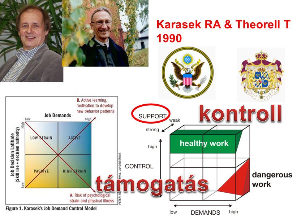 Karasek RA & Theorell T 1990