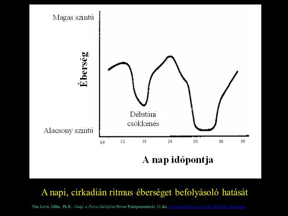 A napi, cirkadián ritmus éberséget befolyásoló hatását Nita Lewis Miller, Ph.D.: Sleep: A Force Multiplier Power Pointprezentáció, 13.dia www.uscg.mil