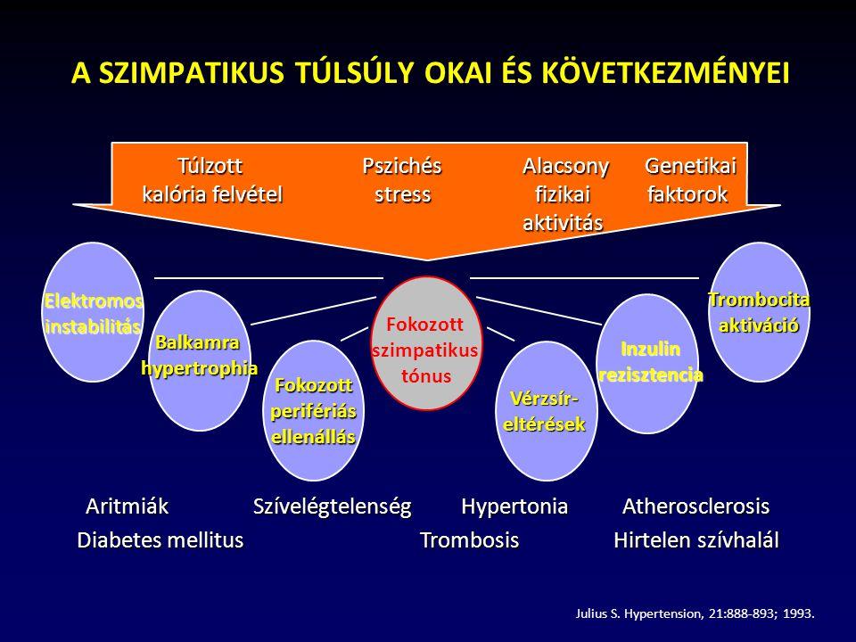 A SZIMPATIKUS TÚLSÚLY OKAI ÉS KÖVETKEZMÉNYEI Elektromosinstabilitás Balkamrahypertrophia Fokozottperifériásellenállás Fokozott szimpatikus tónus Vérzsír-eltérések Inzulin rezisztencia Trombocitaaktiváció AritmiákSzívelégtelenség HypertoniaAtherosclerosis Diabetes mellitus TrombosisHirtelen szívhalál Julius S.