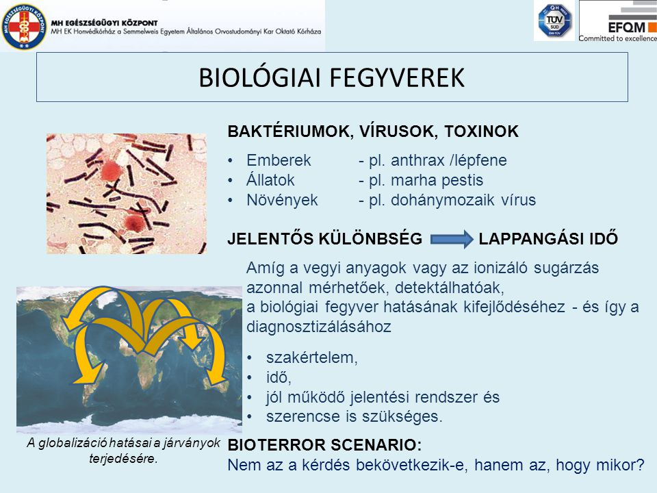 BIOLÓGIAI FEGYVEREK BAKTÉRIUMOK, VÍRUSOK, TOXINOK Emberek - pl. anthrax /lépfene Állatok- pl. marha pestis Növények- pl. dohánymozaik vírus JELENTŐS K