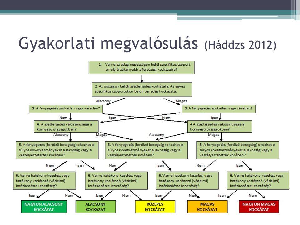 Gyakorlati megvalósulás (Háddzs 2012)