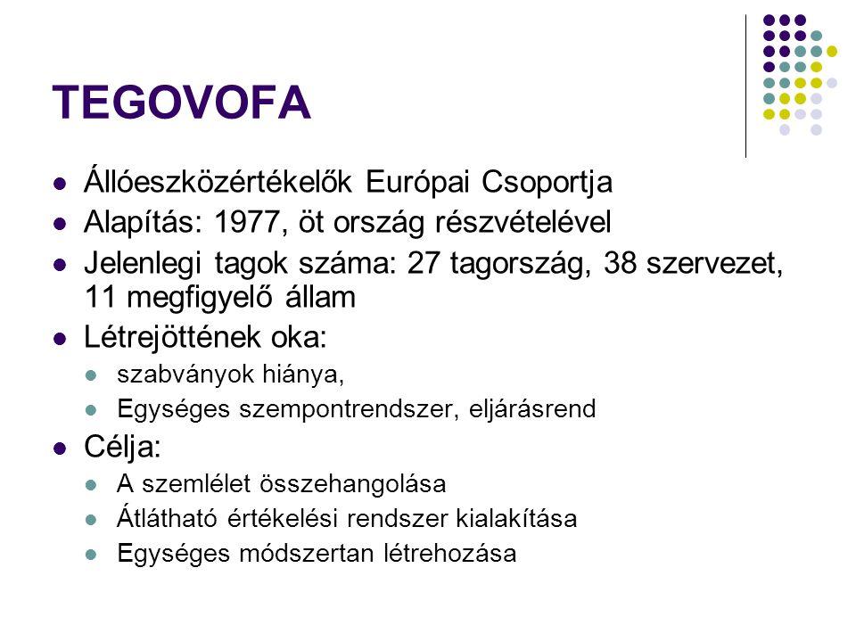 TEGOVOFA Állóeszközértékelők Európai Csoportja Alapítás: 1977, öt ország részvételével Jelenlegi tagok száma: 27 tagország, 38 szervezet, 11 megfigyel
