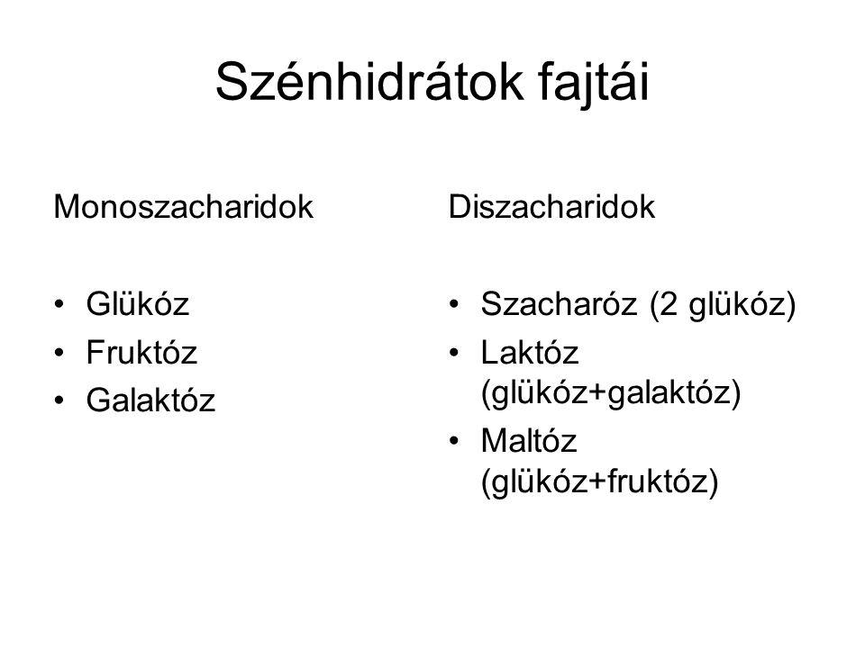 Szénhidrátok fajtái Monoszacharidok Glükóz Fruktóz Galaktóz Diszacharidok Szacharóz (2 glükóz) Laktóz (glükóz+galaktóz) Maltóz (glükóz+fruktóz)