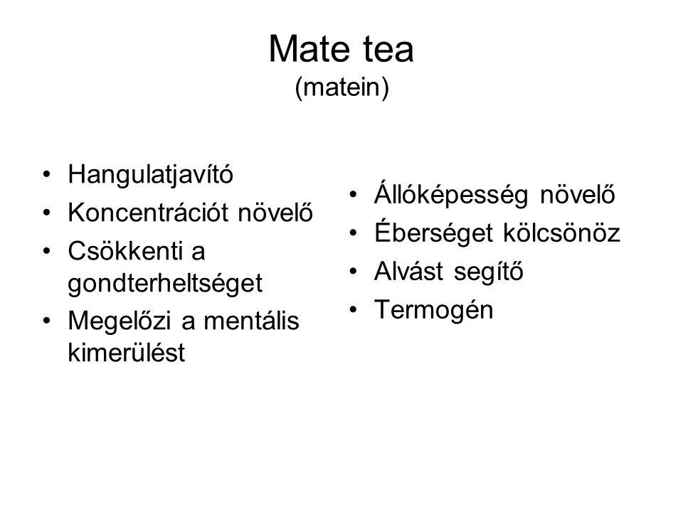 Mate tea (matein) Hangulatjavító Koncentrációt növelő Csökkenti a gondterheltséget Megelőzi a mentális kimerülést Állóképesség növelő Éberséget kölcsö