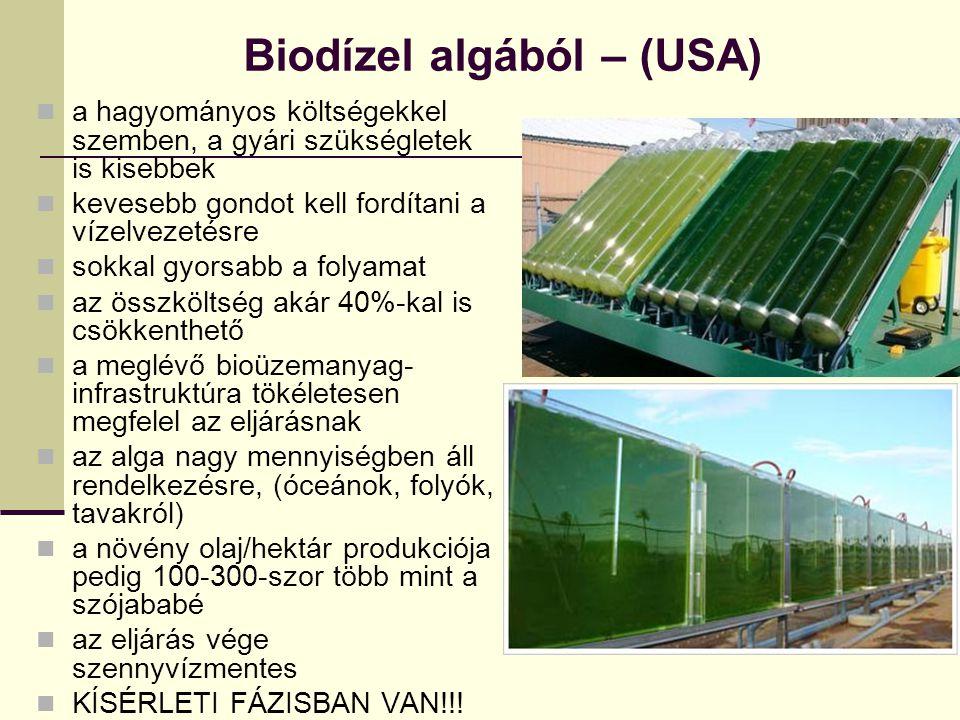 Biodízel algából – (USA) a hagyományos költségekkel szemben, a gyári szükségletek is kisebbek kevesebb gondot kell fordítani a vízelvezetésre sokkal g