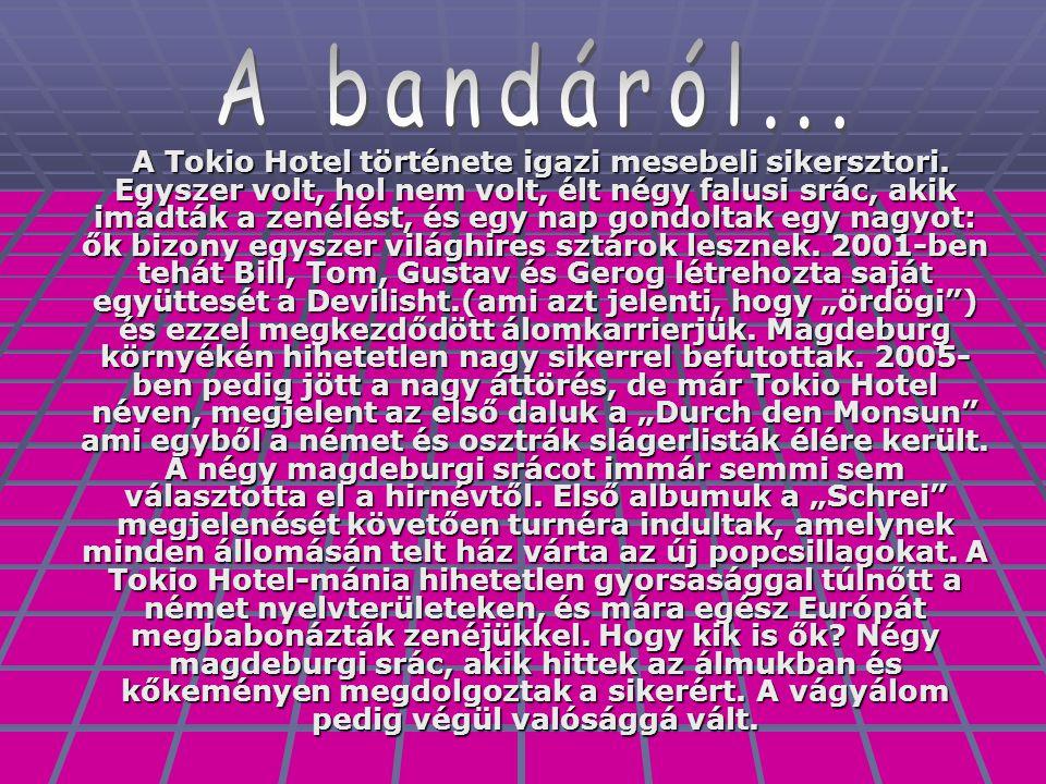 A Tokio Hotel története igazi mesebeli sikersztori. Egyszer volt, hol nem volt, élt négy falusi srác, akik imádták a zenélést, és egy nap gondoltak eg