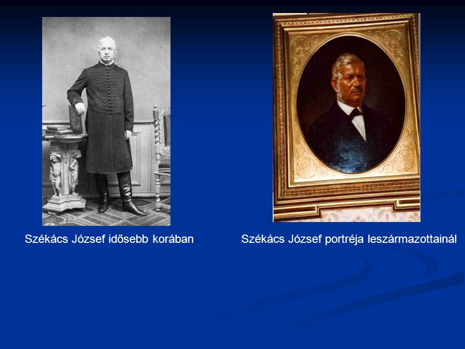 Székács József portréja leszármazottainálSzékács József idősebb korában